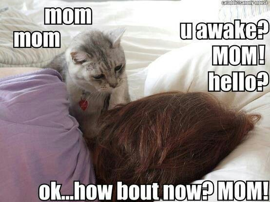 MOM (via Taylor Lampson)